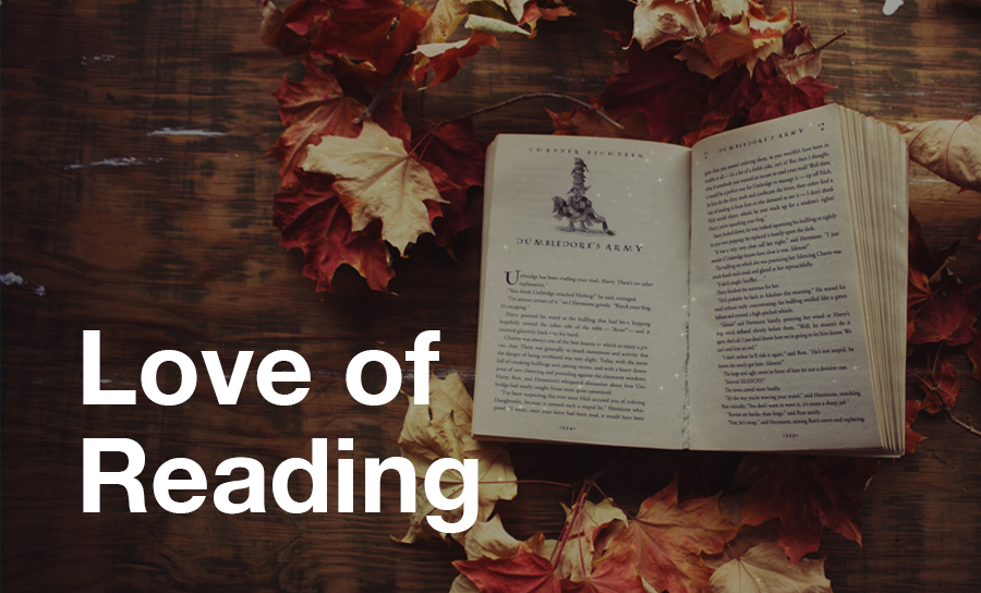 Image for Developing a Love of Reading