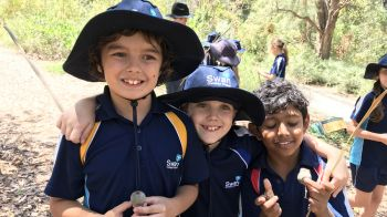 Image for Year 4 Excursion to Kings Park